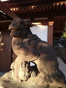 代田八幡神社の狛犬様